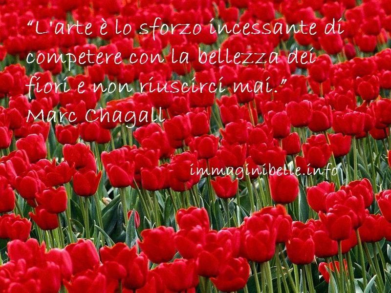 Foto tulipani e citazione  Immagini Belle